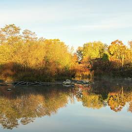 Autumnal Symmetry - a Stress Reducing View to Take a Breather by Georgia Mizuleva