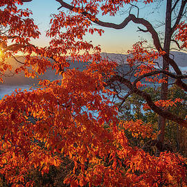 Autumn's Beauty by Robert J Wagner
