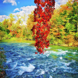 Autumn's Flame - Niagara Falls, New York by Lynn Bauer