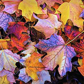 Kimberleigh Ladd - Autumn