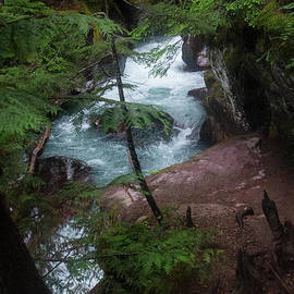 Avalanche Gorge-5246 by Gary Gingrich Galleries