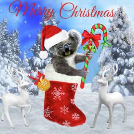 Glenn Holbrook - Baby Koala Christmas Cheer