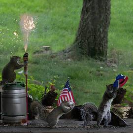 Backyard Squirrels Enjoying Fourth Of July by Dan Friend