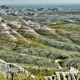 Badlands Vista by Suzanne Wilkinson