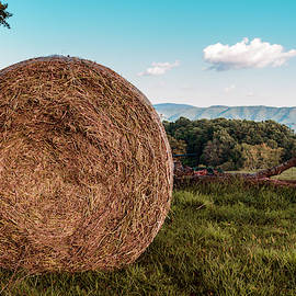 Bale With A View by Jim Love