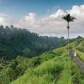 Bali Pathway by Ian Robert Knight