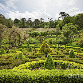 Bantry House and Garden-2 by Eva Lechner