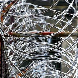 Barbed Wire by Ed Weidman