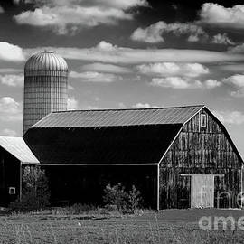 Barn And Silos In Black And White by Les Palenik