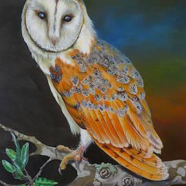 Barn Owl Hunting Interlude by Phyllis Beiser