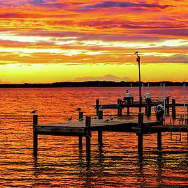 Bay Sunset by Kathi Isserman