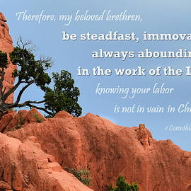 Be Steadfast by Kim Blaylock