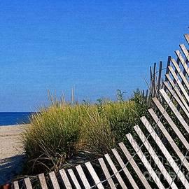 Beach Fence Curves by Lori Pessin Lafargue