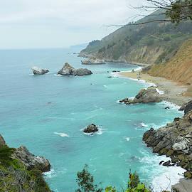 Beach in Big Sur by Cathy P Jones
