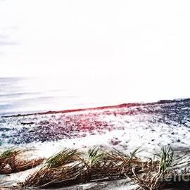 Beach In December by Belinda Threeths