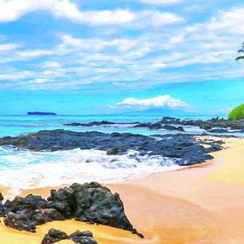 Beach Near Wailea Maui by Dominic Piperata