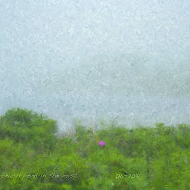 Beach Pond In The Mist by Bill McEntee