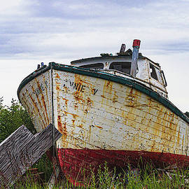 Beached Fishing Boat by Lisa Bell