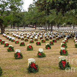 Beaufort VA National Cemetery by Norma Brandsberg