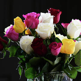 Beautful Roses  by Karen Majkrzak