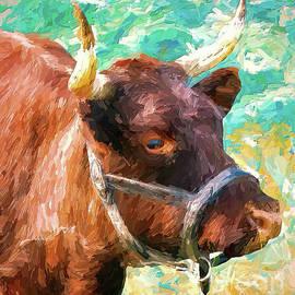 Beautiful Bull by Tina LeCour