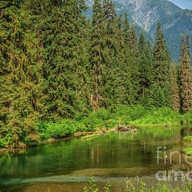 Beautiful Fish Creek by Robert Bales