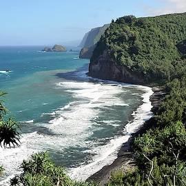 Beautiful Hawai'i by Heidi Fickinger