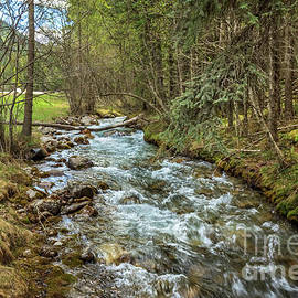 Beautiful Redstreak Creek by Robert Bales