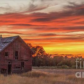 Beautiful Summer Sunset  by Robert Bales