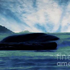 Beauty in Boiler Bay by Jeff Swan