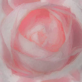 Beauty of Pink by Ernie Echols