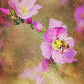 Bee Love, Bee Kind by Elaine Malott