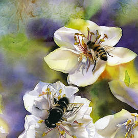 Bee With Pear Blossom by Alfred Ng