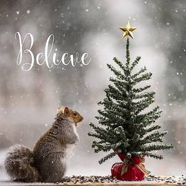 Believe Christmas Tree Squirrel Square by Terry DeLuco