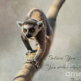 Believe you can... by Eva Lechner