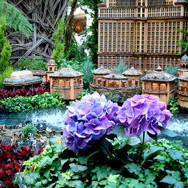 Bellagio Conservatory Garden by Arlane Crump