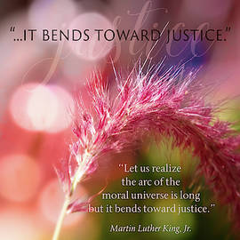 Bending Toward Justice by Terry Davis