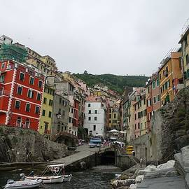Best View of Riomaggiore by Patricia Caron