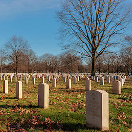 Beverly National Cemetery by Louis Dallara