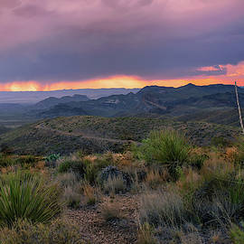 Big Bend Stormy Late Afternoon by Harriet Feagin