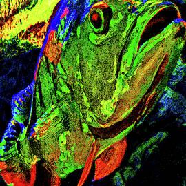 Big Fish. by Andy Za
