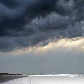 Big Sky Wild Dunes by Evie Carrier