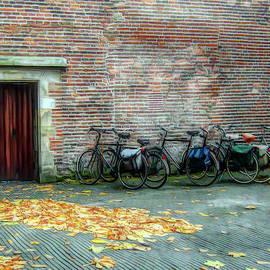 Alison Frank - Bikes in Amsterdam