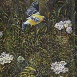 Bird in the Meadow  by Farideh Haghshenas