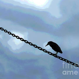 Bird on a Wire 300 by Sharon Williams Eng