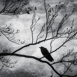 Garry Gay - Bird On Autumn Branches Black And White