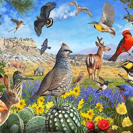 Birds Of Arid Texas by R christopher Vest