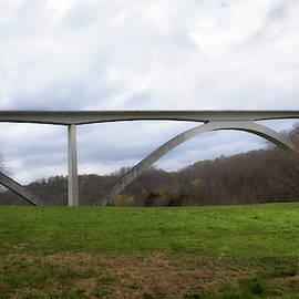 Birdsong Hollow Bridge by Susan Rissi Tregoning