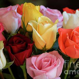 Birthday Bouquet by Deb Halloran
