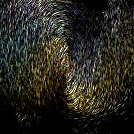 Black Hole by Maria Reverberi